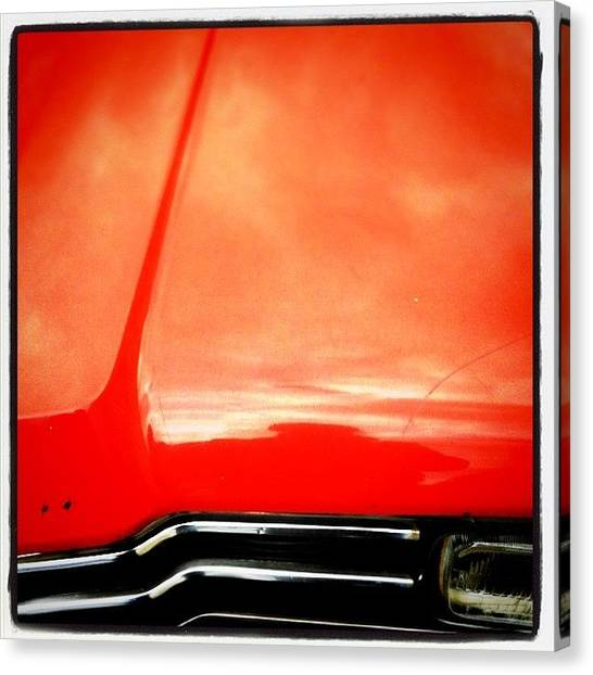 Grills Canvas Print - Red Tiger by Florian Divi