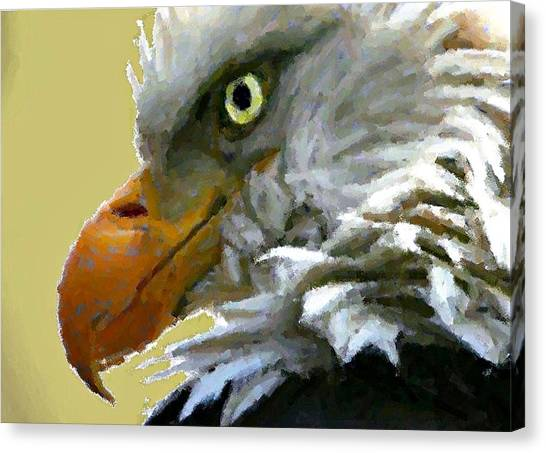 Eagle Eye Canvas Print by Carrie OBrien Sibley