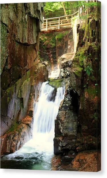 Sabbaday Falls Canvas Print by David Gilman
