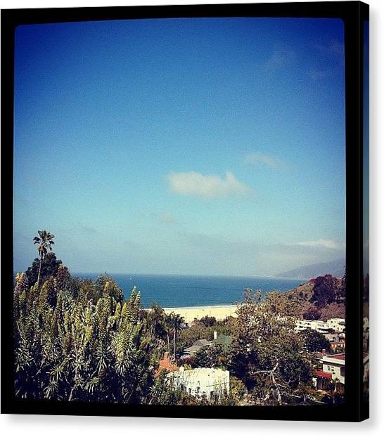 Palm Trees Canvas Print - Santa Monica View by Lana Rushing
