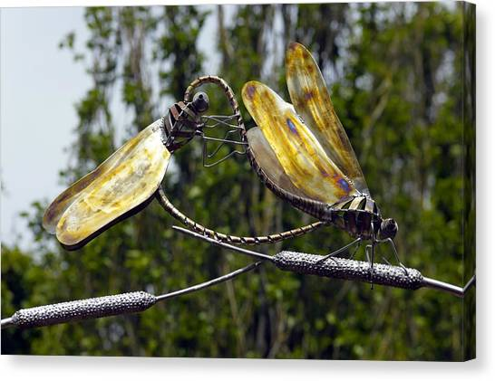 Metal Dragonfly Canvas Print - Sculpture Of Two Dragonflies by Dr Keith Wheeler