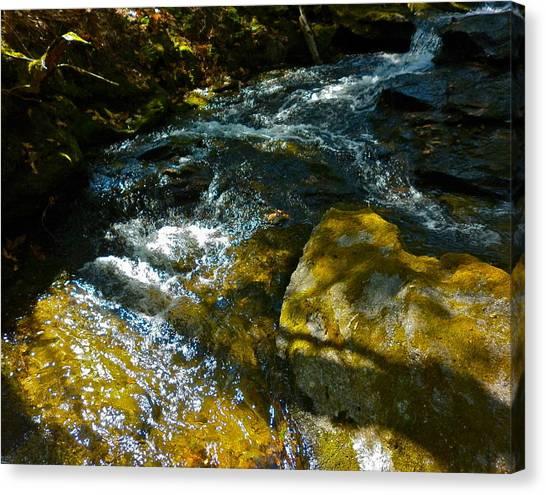 Shadowed Cascade Canvas Print by George Ramos