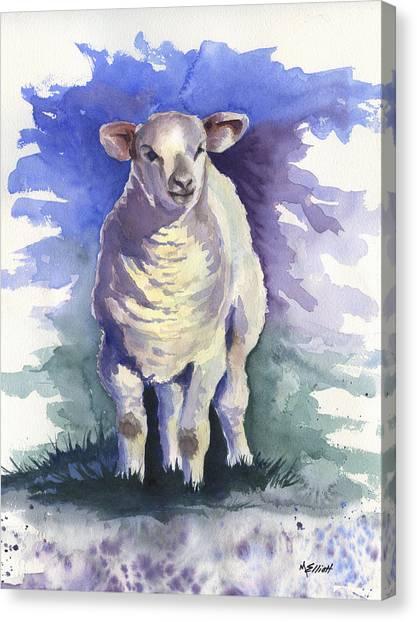 Sheep Canvas Print - Shellies Lamb by Marsha Elliott