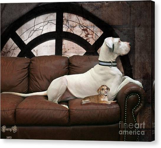 Shelter Dogs Canvas Print