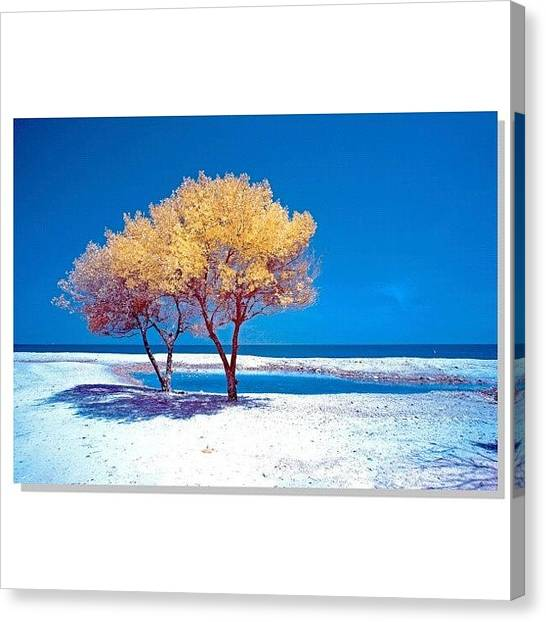 Vacations Canvas Print - #squaready #sky_perfection by Tommy Tjahjono