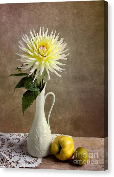 Limes Canvas Print - Still Life With Dahila by Nailia Schwarz