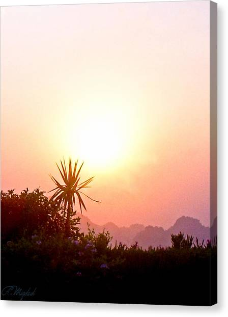 Sunset Canvas Print by Amr Miqdadi
