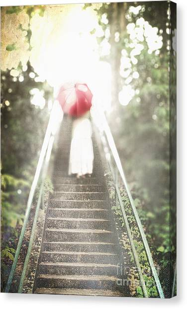 Lonliness Canvas Print - The Ascent by Stephanie Frey