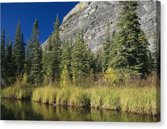 Northwest Territories Canvas Print - The Limestone Face Of A Mountain by Raymond Gehman