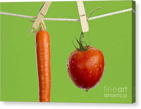 Carrots Canvas Print - Tomato And Carrot by Blink Images