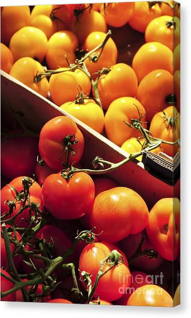 Produce Stand Canvas Print - Tomatoes On The Market by Elena Elisseeva