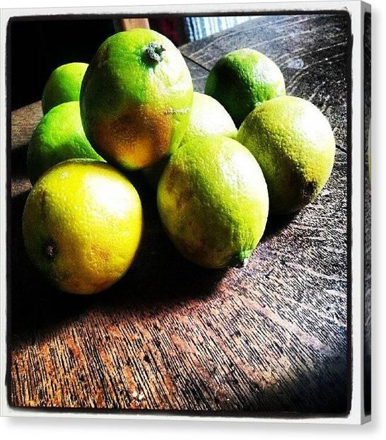 Limes Canvas Print - #torquay #torbay #devon #myview by Rachel Lavender