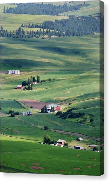 Wheatfields In Rural Washington State Canvas Print by Carl Purcell