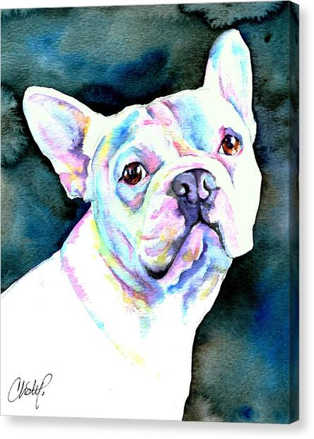 French Bull Dogs Canvas Print - White French Bulldog by Christy  Freeman
