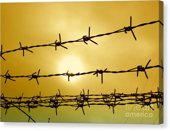 Wire Fence Canvas Print by Antoni Halim