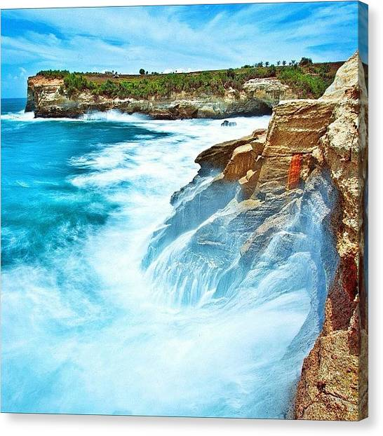 Natureonly Canvas Print - Love This Picture? Check Out My Gallery by Tommy Tjahjono