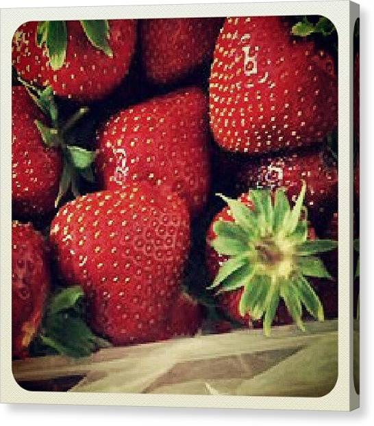 Berries Canvas Print - Instagram Photo by Ultraviolet Blueberry