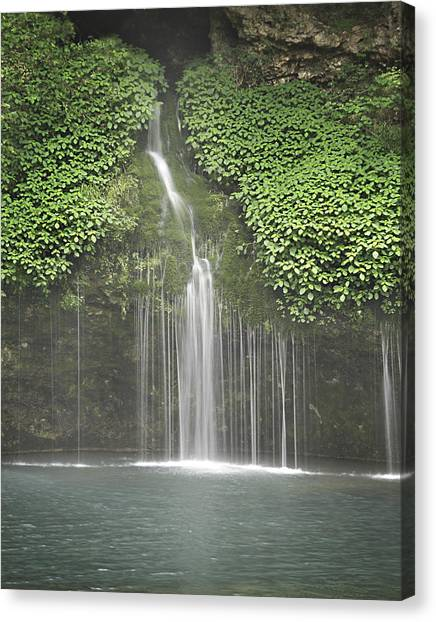 1004-1936 Natural Falls State Park 3 Canvas Print by Randy Forrester