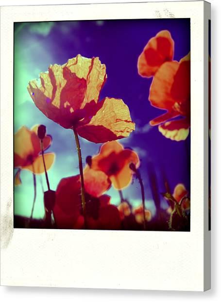 Corn Field Canvas Print - Field Of Poppies by Bernard Jaubert