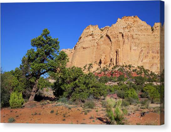 San Rafael Swell Canvas Print by Southern Utah  Photography