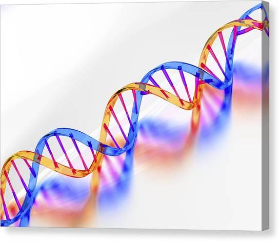 Dna Molecule, Artwork Canvas Print by Laguna Design