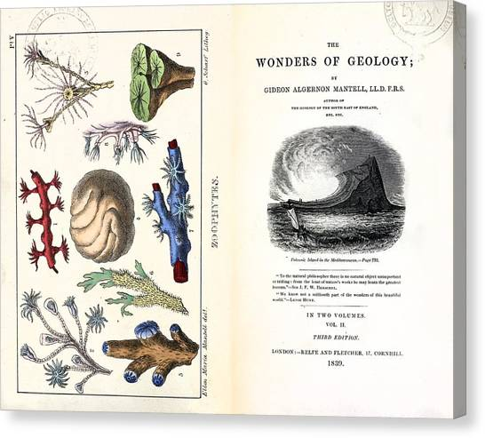 1838 Frontis Mantell \wonders Of Geology\ Canvas Print by Paul D Stewart