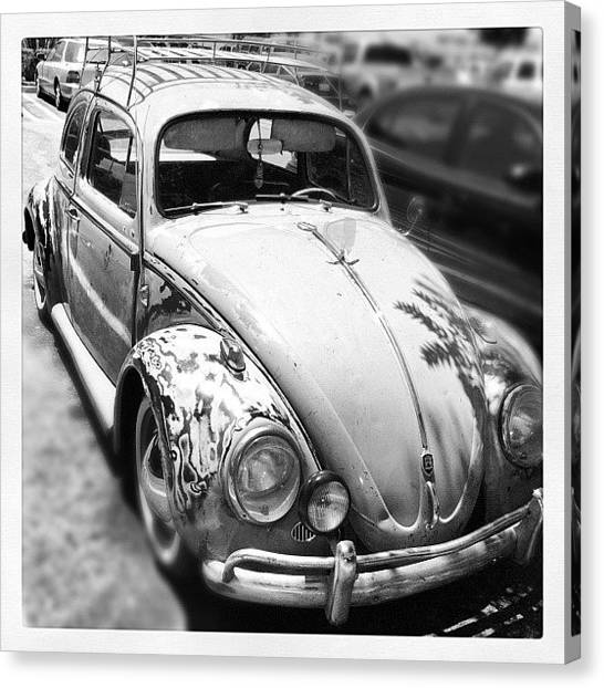 European Canvas Print - 1961 Volkswagon Beetle by Gwyn Newcombe