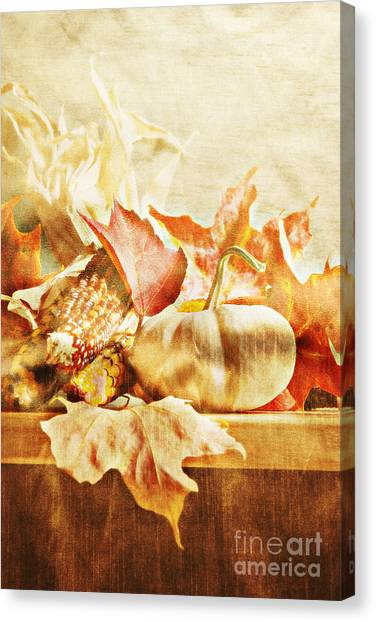 Indian Corn Canvas Print - Autumn by HD Connelly