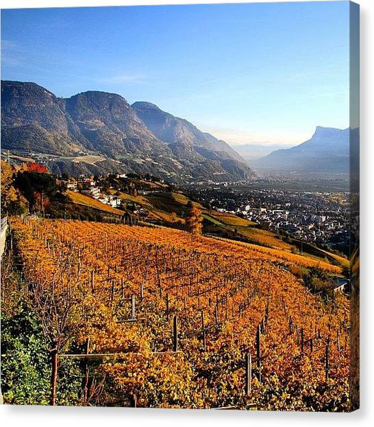 Italy Canvas Print - Autumn In South Tyrol by Luisa Azzolini