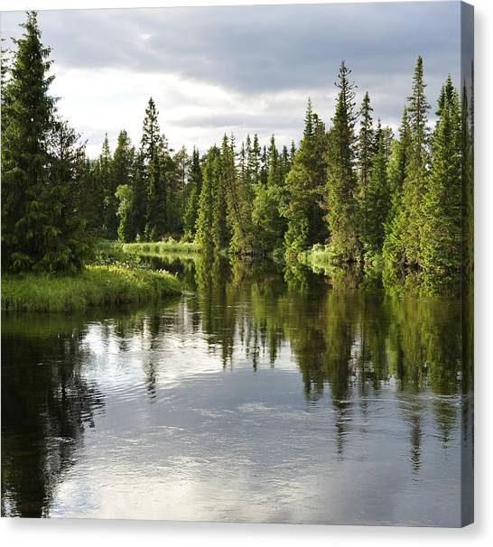 Calm Lake Reflection Canvas Print by Conny Sjostrom