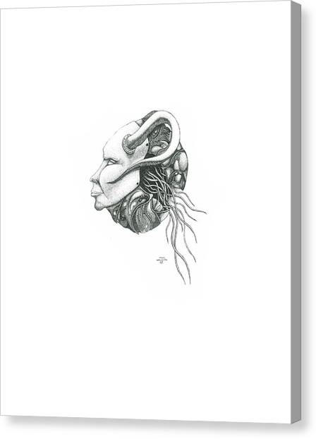 Creepy Curiosity IIi Canvas Print by Jeff Gould