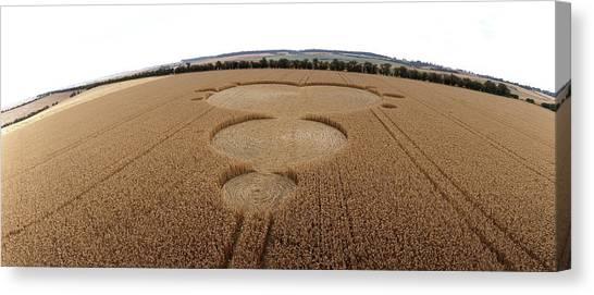 Crop Formation In Form Of Mandelbrot Set Canvas Print by David Parker