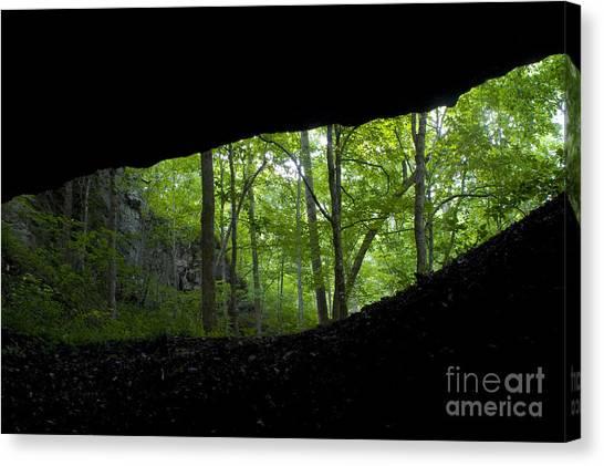 Limestone Caves Canvas Print - General Davis Cave by Dante Fenolio