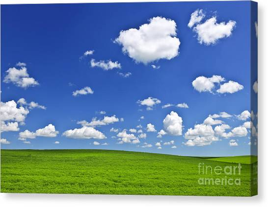 Saskatchewan Canvas Print - Green Rolling Hills Under Blue Sky by Elena Elisseeva