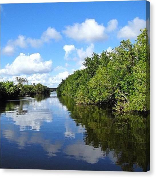 Everglades Canvas Print - #ig #igers #instagram #instagood by Carlos Reyes