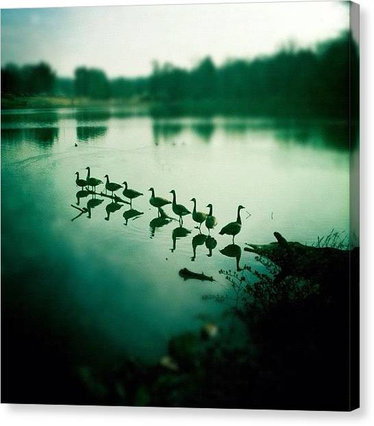 Ponds Canvas Print - #instagram #iphoneography by Kim Balevre