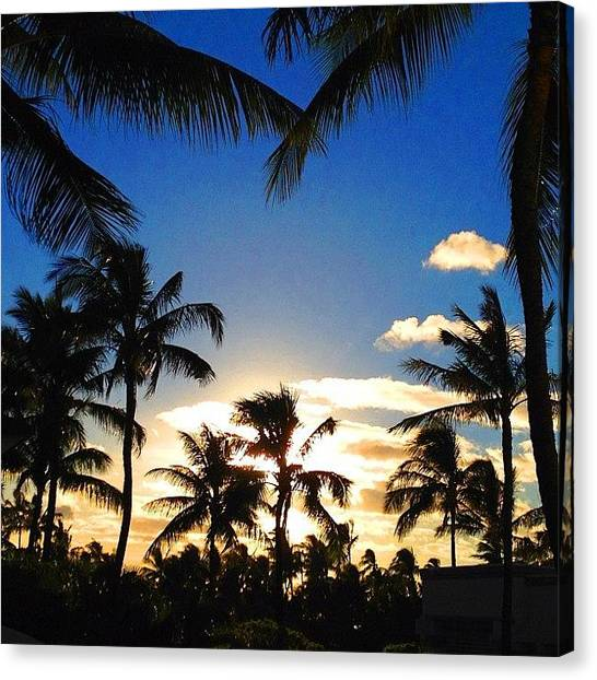 Seahorses Canvas Print - #oahu #ocean #sky #stream #sunset by Andy Walters