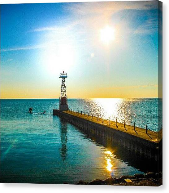 Ocean Animals Canvas Print - One Beautiful Morning by San Gill