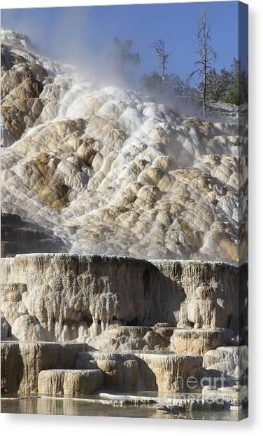 Yellowstone Caldera Canvas Print - Palette Spring And Travertine Sinter by Richard Roscoe