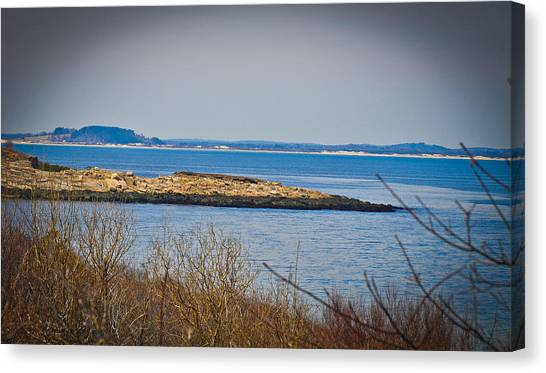 Rockport Park Canvas Print by Erica McLellan