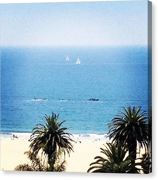 Palm Trees Canvas Print - Santa Monica Beach by Lana Rushing