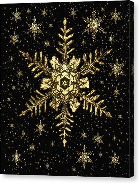 Snowflakes Canvas Print by Mehau Kulyk