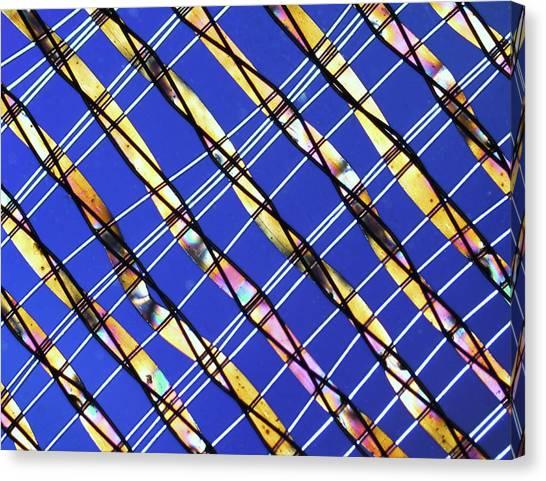 Synthetic Fibre, Light Micrograph Canvas Print by Pasieka
