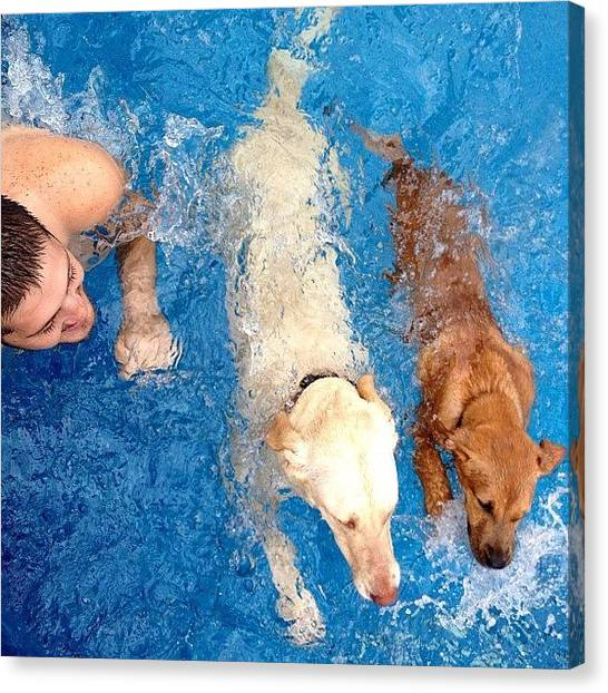 Swimming Canvas Print - #thebrunocompound #instagram #instamood by Louis Bruno