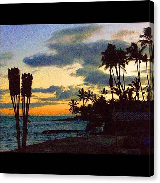Seahorses Canvas Print - #hawaii #honolulu #waikiki #lanikai by Andy Walters