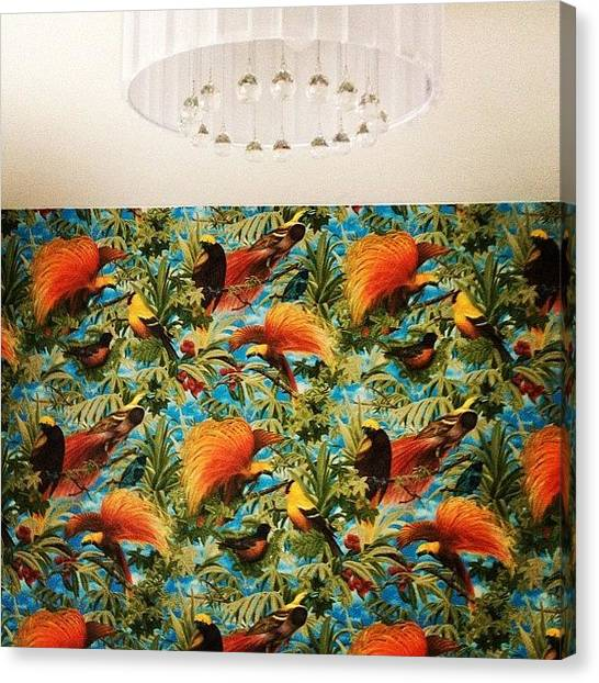 Tropical Birds Canvas Print - Instagram Photo by Ana Sharko