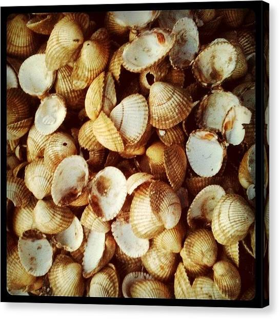Seafood Canvas Print - Instagram Photo by Just Berns