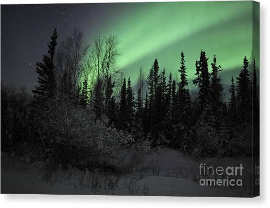 Northwest Territories Canvas Print - Aurora Borealis Over Vee Lake by Jiri Hermann