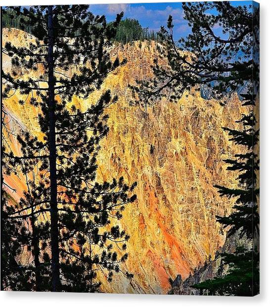 Wyoming Canvas Print - Lower Yellowstone Canyon #all_photos by Chris Bechard