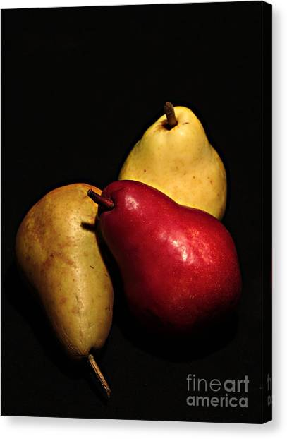 3 Of A Pear Canvas Print by David Taylor